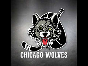 Chiropractic Bartlett IL Community Partners Chicago Wolves